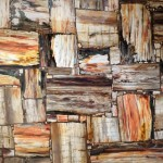 Petrified Wood полудрагоценный камень, окаменелое дерево